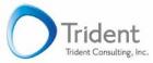 www.tridentconsultinginc.com